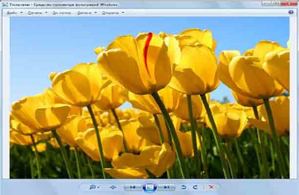 стандартная программа для просмотра изображений: